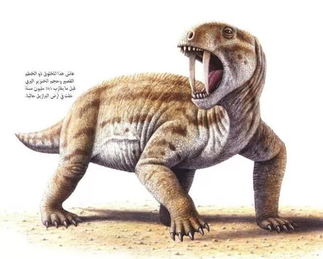 نتيجة بحث الصور عن معلومات بالصور عن الحيوانات المنقرضة