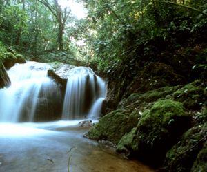 بالصور والفيديو رحلة الى غابات الامازون اخطر اماكن العالم