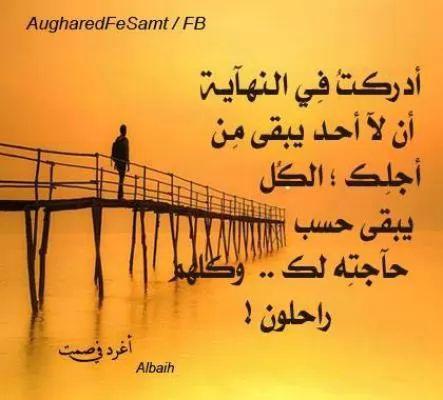 قبل أن ترحل أخي الزائر..! - صفحة 24 6549-1-or-1389723753