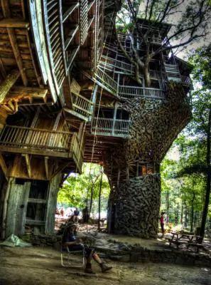 شجرة الوزير اكبر منزل خشبي