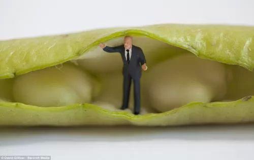 ������ ���� ������ �� ���� ������