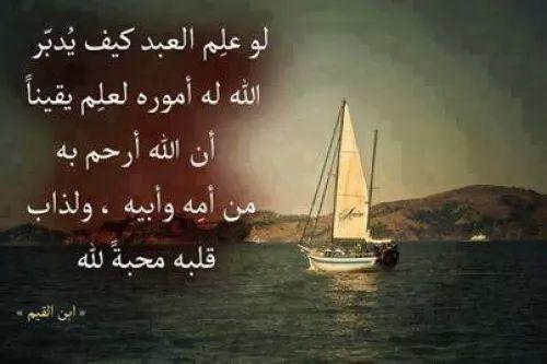 قبل أن ترحل أخي الزائر..! - صفحة 24 6929-1-or-1405879518