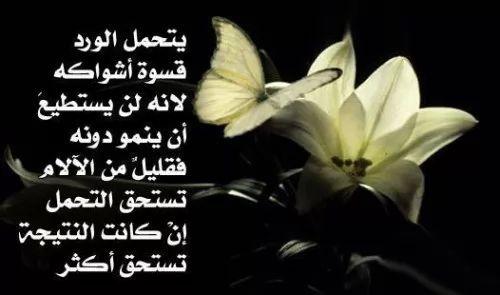 ... اشعار وقصائد حب وغرام بدون نت 2018 تصوير الشاشة 4 ...
