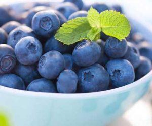 فوائد التوت الازرق واضراره الصحية
