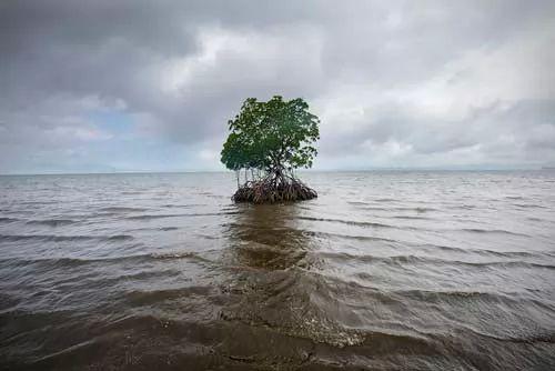 ما هي اسباب ارتفاع مستوي البحر ؟