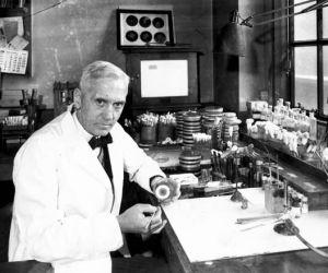 كان العالم الفرنسي الكسندر فليمنج هو ذلك الطبيب النابغة الذي اكتشف البنسلين، وحصل على جائزة نوبل في عام 1945 عن اكتشافه المهم