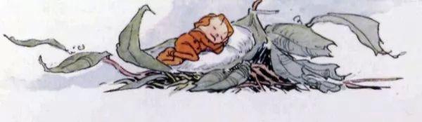 صور - قصة الولد الصغير صاحب المنزل المتواضع من قصص الاطفال