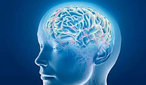 ما هى السكتة الدماغية ؟ 9084_1_or_1485695150.jpg