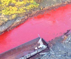 ذكرت لنا صحيفة سيبيريا تايمز أن نهر دالديكانDaldykan الروسي بالقرب من مدينة نوريلسك قد تحول كله الي لون الدم، ونجد السكان المحليين بالقر من نهر ...
