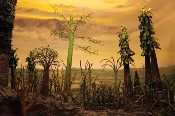 صور - ما هي اسباب انقراض الحيوانات والنباتات الطبيعية والبشرية ؟