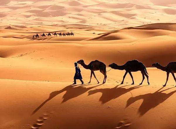 صحراء المغرب 2