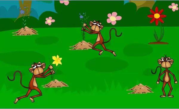 القرود الحمقى قصة القرود الحمقى