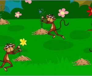 نستكمل معكم اليوم سلسلة قصص الاطفال التي نقدمها لكم من خلال موقعكم سحر الكون ، وقصتنا اليوم من قصص الاطفال الجميلة الهادفة وهي قصة القرود الحمقى