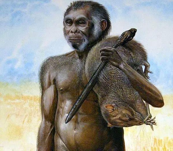 صفات قوم الهوبيت