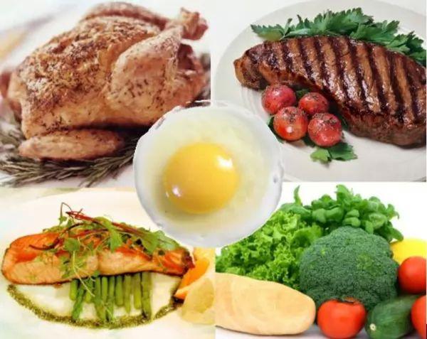 الاطعمة الغنية بالبروتين