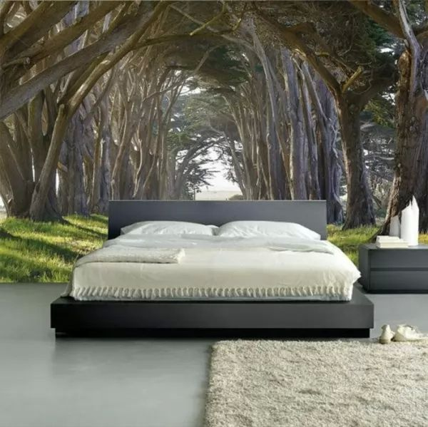 ديكورات ورق الحائط لغرف النوم wallpaper-bedroom_10394_4_1522521178.jpg