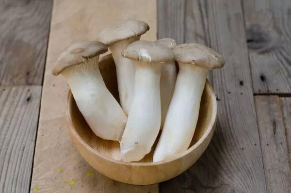 فوائد المشروم الصحية لجسم الإنسان Healthy-mushrooms_10411_1_1523408727