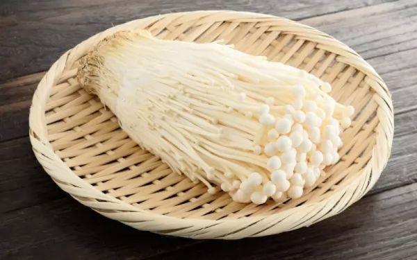 فوائد المشروم الصحية لجسم الإنسان Healthy-mushrooms_10411_5_1523408733