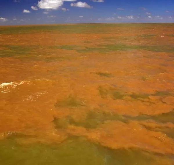 الحقائق الرائعة عن نهر الأمازون  Amazon-river-facts_10462_4_1526039771