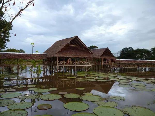 الحقائق الرائعة عن نهر الأمازون  Amazon-river-facts_10462_5_1526039772