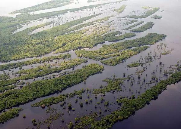 الحقائق الرائعة عن نهر الأمازون  Amazon-river-facts_10462_6_1526039773