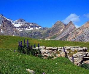أين تقع جبال البيرينيه ؟