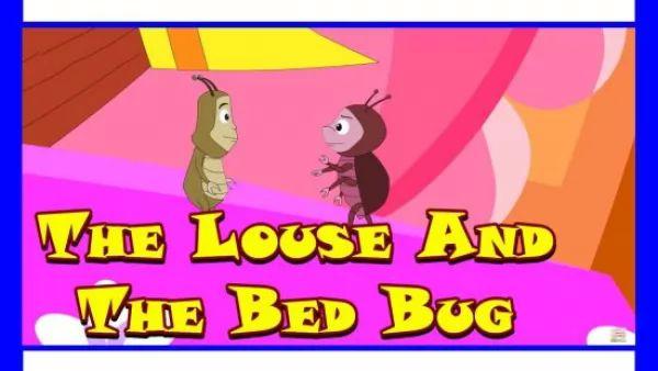 قصة ملك النمل وبق الفراش