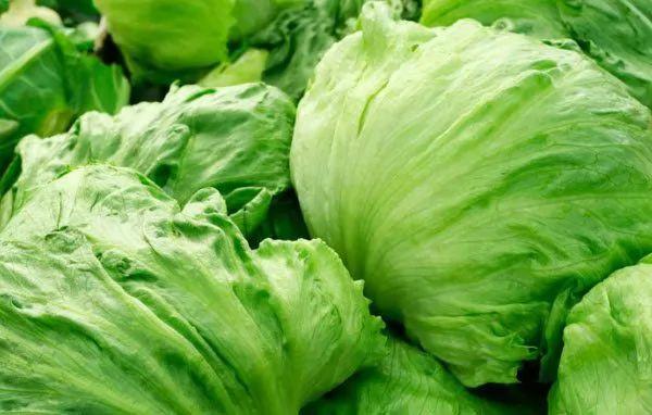 10 من الخضروات التي قتلت البشر 10-vegetables-that-have-killed-humans_10896_3_1546076634