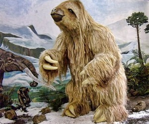 تستند الشخصيات الرئيسية الثلاثة التي نعرفها جميعا من فيلم العصر الجليدي وتوابعه جميعها إلى الحيوانات التي عاشت خلال العصر الجليدي الذي بدأ خلال عصر ...