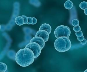 تنتقل الإضطرابات الوراثية من جيل إلى جيل، وفي بعض الأحيان، يقوم أحد الوالدين فقط بتمرير الجين المعيب، والذي يؤدي إلى حدوث مرض وراثي، ولقد ثبت أن بعض ...