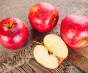 التفاح هو بعض الفواكه الأكثر شعبية واللذيذة على هذا الكوكب، ولا يوجد شيء مثل قضم تفاحة مشرقة حمراء حلوة لإرواء عطشك وإرضاء أسنانك الحلوة مع تعزيز ...