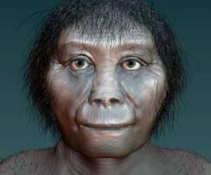 يشير تاريخ الكربون الجديد للأسنان القديمة الموجودة في جزيرة فلوريس الإندونيسية إلى أن البشر الأوائل ربما يكونوا قد دفعوا أنواع الهوبيت إلى الإنقراض، ...