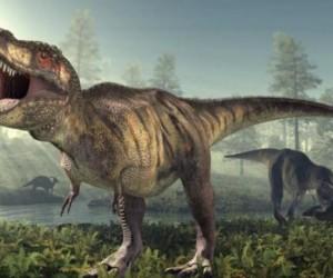 الديناصور تي ريكس قد يكون أو لا يكون أكثر الديناصورات المخيفة التي عاشت على الإطلاق (يمكنك أيضا أن تكون دليل جيد لكل من الألوصور أو السبينوصور أو ...
