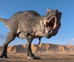 قام علماء الأحافير بتسمية ما يقرب من 1000 جنس من أنواع الديناصورات، وهناك شيء مثير للإهتمام حول كل واحد، ومع ذلك، يمكن التعرف على حفنة منهم على الفور ...